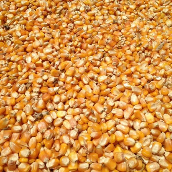 Кукуруза фуражная дробленая 40 кг