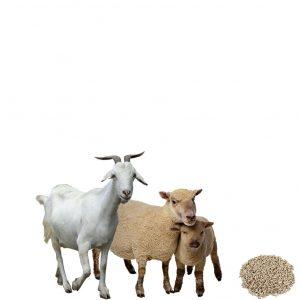 Комбикорм ОК-80 для коз и овец, 30 кг