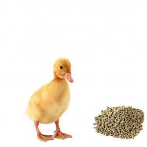 Комбикорм ПК-4 для молодняка кур,уток,гусей до 30 недель, 40 кг, ИСТРА